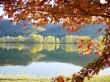 fall equinox sceen