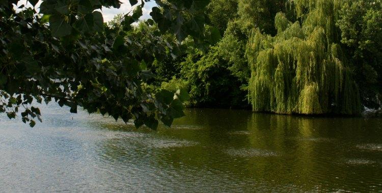 Powderhorn park lake