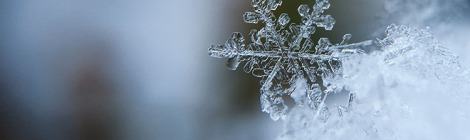 close focused snowflake by aaron burden